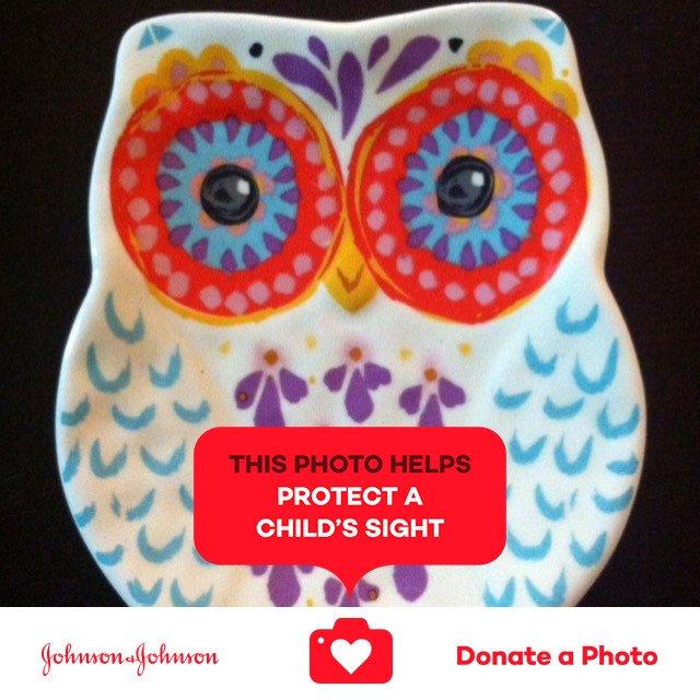 Ceramic Owl - Handmade Arts & Crafts jnj donateaphoto WorldSightDay