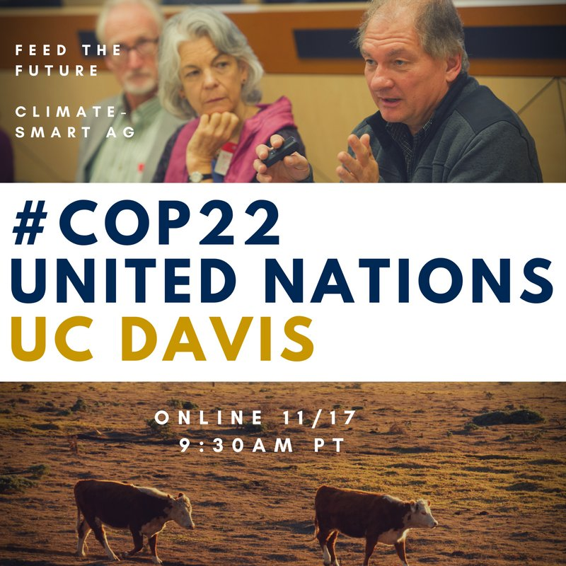We can take decisive action on climate right now.   UC Davis joins #COP22 tomorrow for #ClimateSmart food solutions https://t.co/SUb8VJ3siE https://t.co/33KIQ1aRNV