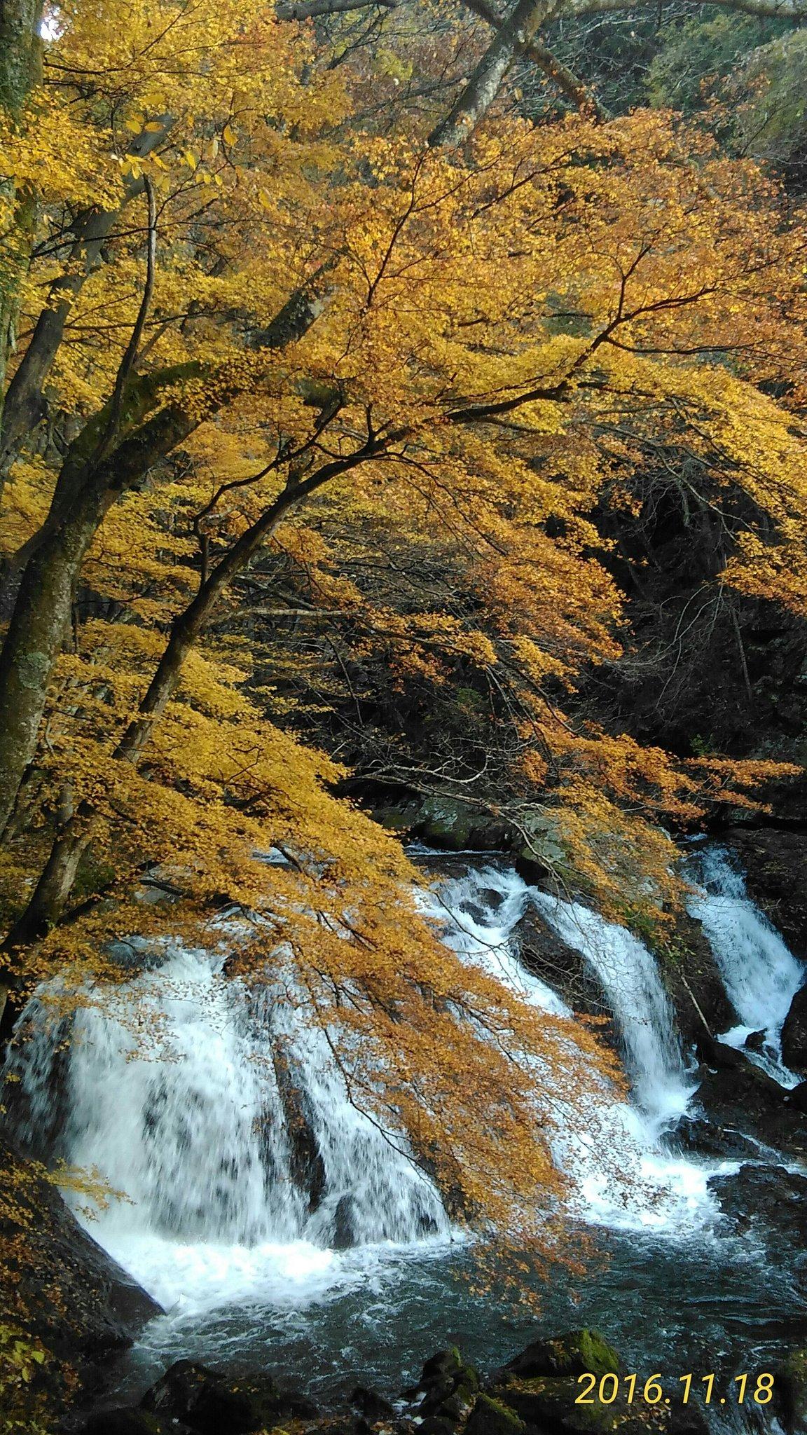 江竜田の滝の紅葉(2016/11/18)