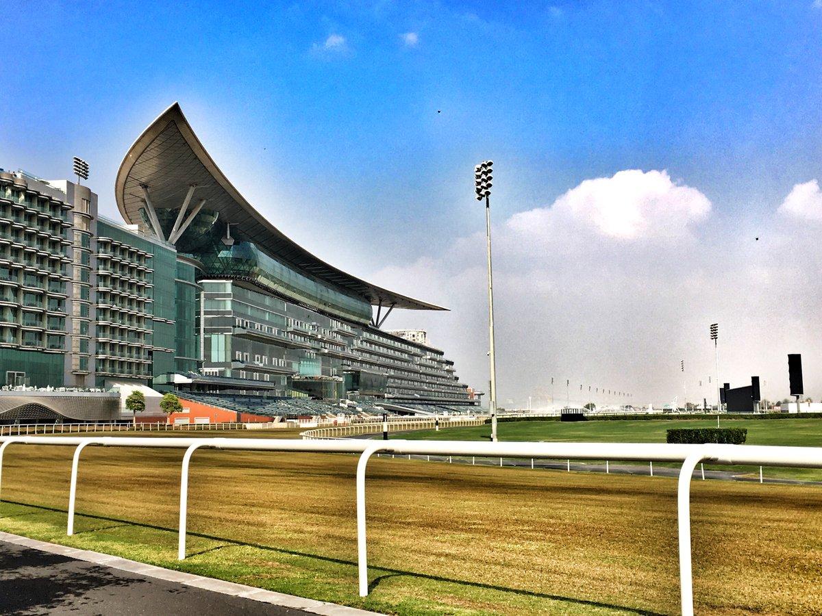 2017 Dubai için 5 safkan ile kabul gördük