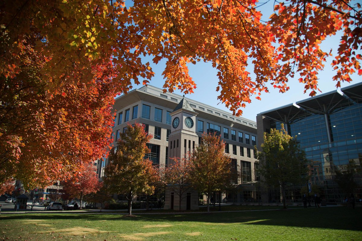 Georgetown application essays law