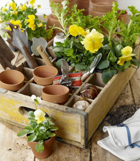 An old soda crate can be repurposed into a potting caddy. diy