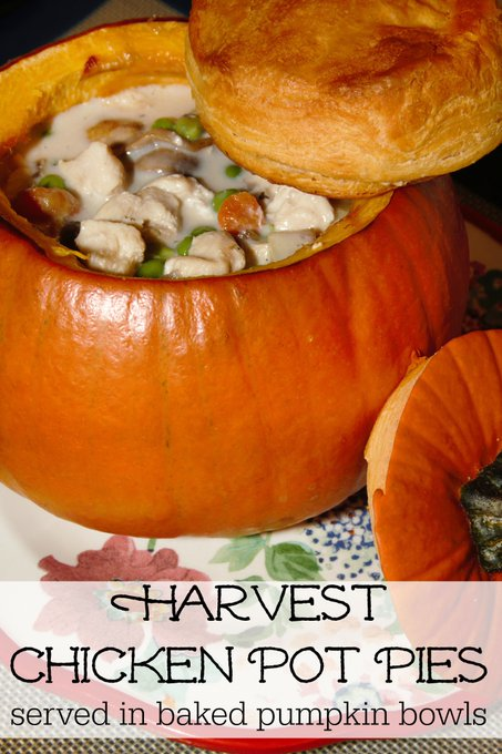 Harvest Chicken Pot Pies - served in baked bowls. on the blog: ://