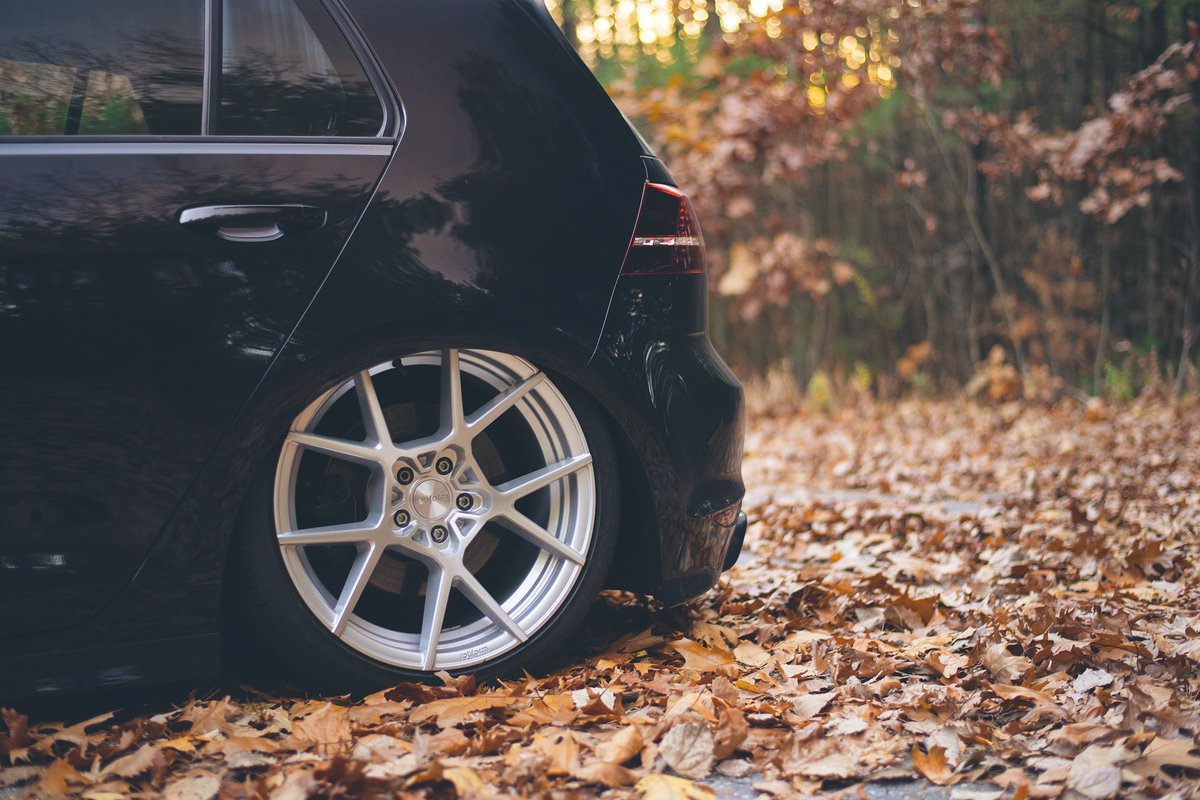 The seasons are slowly changing; are you ready for the next one?   📷 @_thedogmother  @vw #mk7r #rotiform  #lifeonair