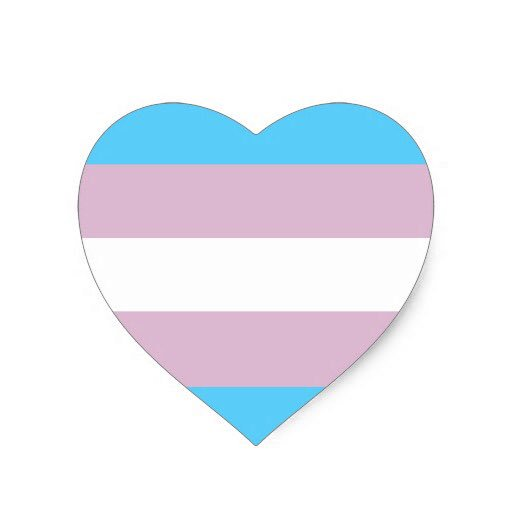 Transgender Day of Remembrance. A time to honor #trans lives lost to senseless violence. #TDOR https://t.co/bke5M6txB8