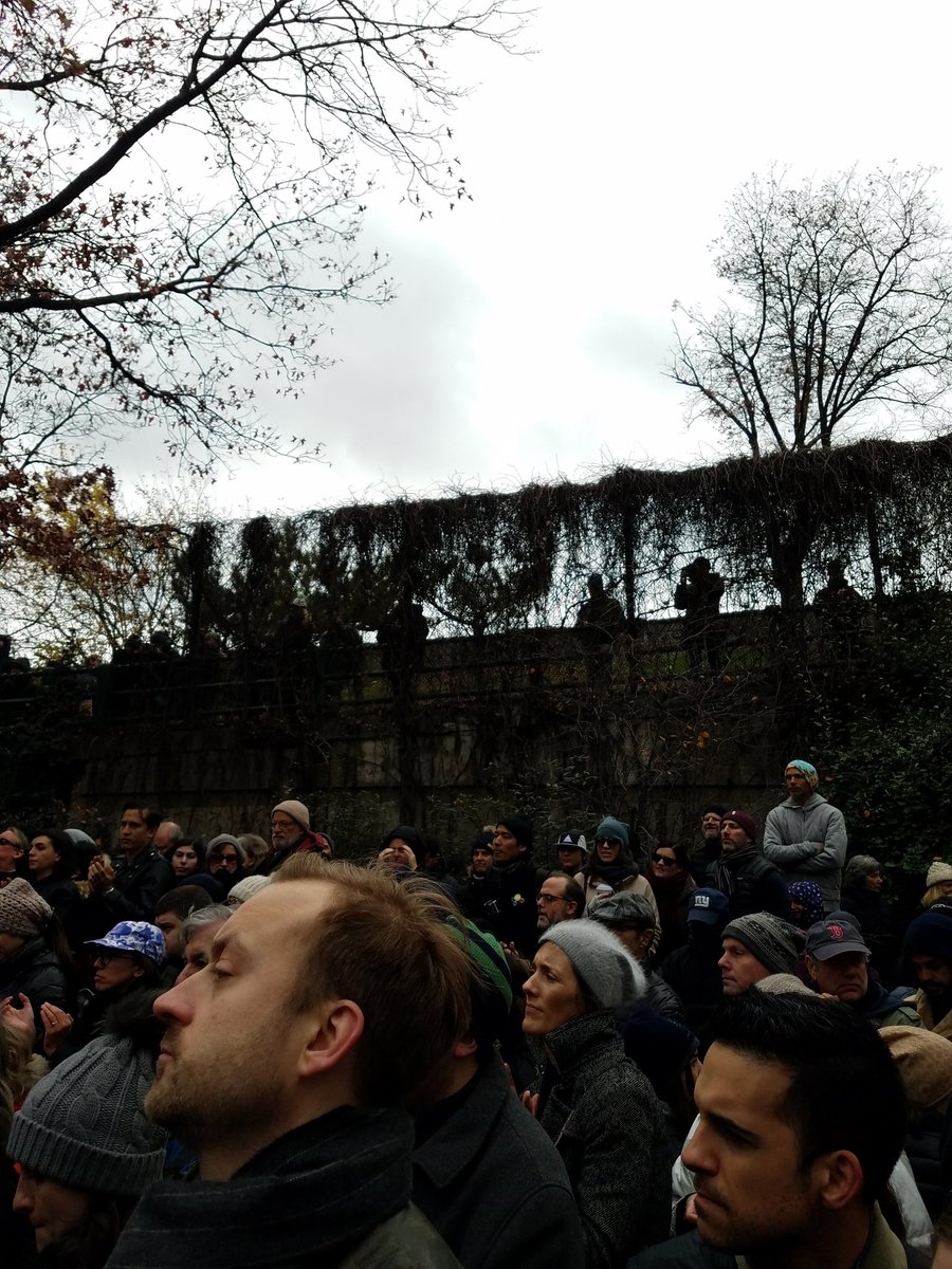 Crowd in Adam Yauch Park so big, police cut off access. Some lining BQE ramp overlooking park to listen https://t.co/JbGzwG1w2J