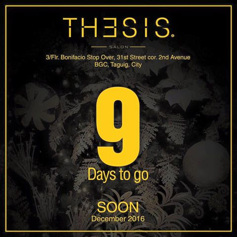 thesis salon bgc