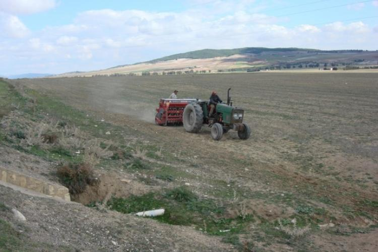 Conservation Ag has the potential to enhance #soil fertility and reduce erosion in #Tunisia #drylands #climatechange https://t.co/YE4TFdI4OC https://t.co/kWCUjyFxP7