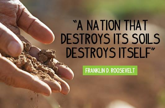 This #WorldSoilsDay lets #ChangeTheWorld and save our soil. https://t.co/5ocO4P6vEe