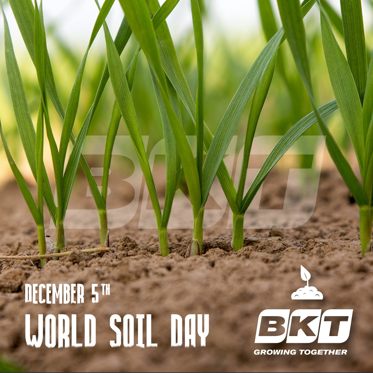 A #sustainable use of the soil inspires our work, every day. Today BKT celebrates #WorldSoilDay 2016! https://t.co/PF7tL6bPBC