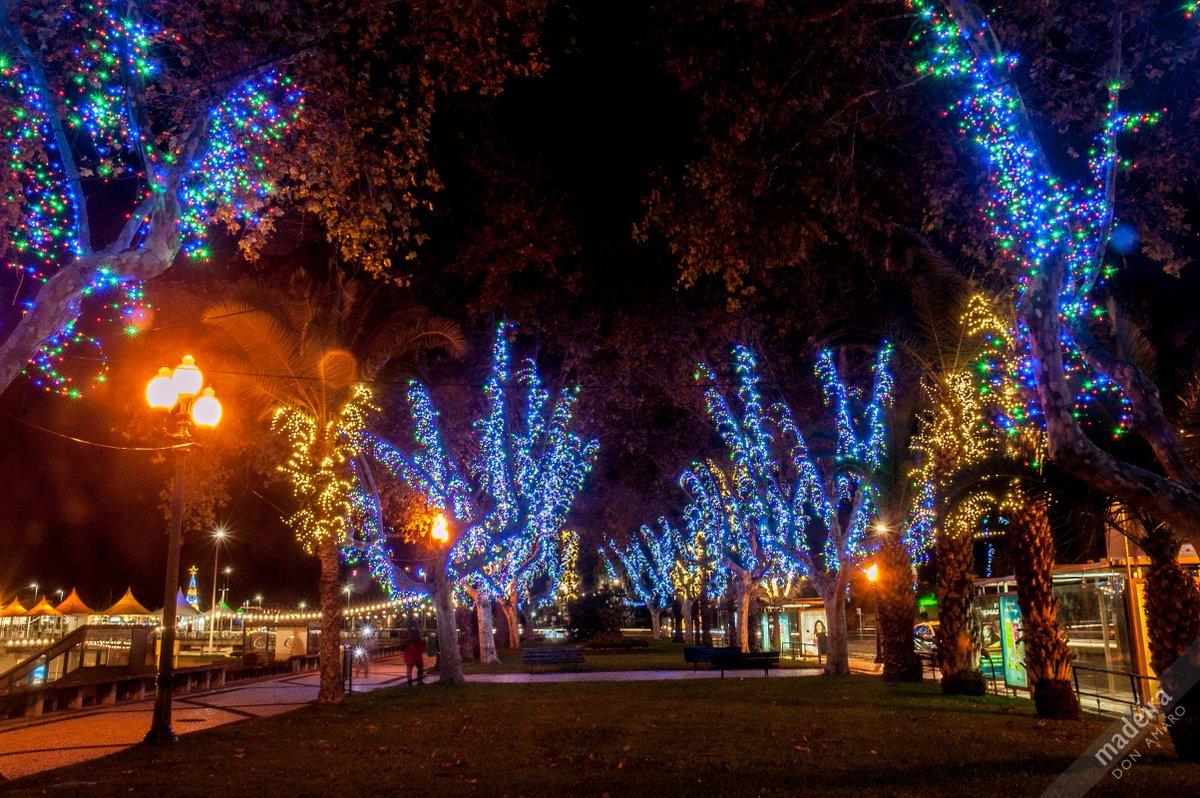 Madeira A Midnight Walk In Funchal City Of Island Sharingmadeira Christmas