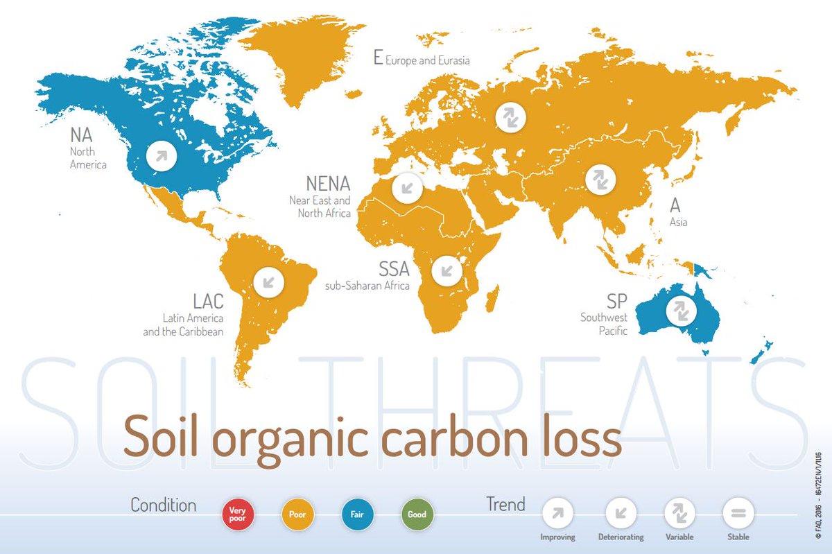 Soil solutions rebuildsoil twitter for Organic soil solutions