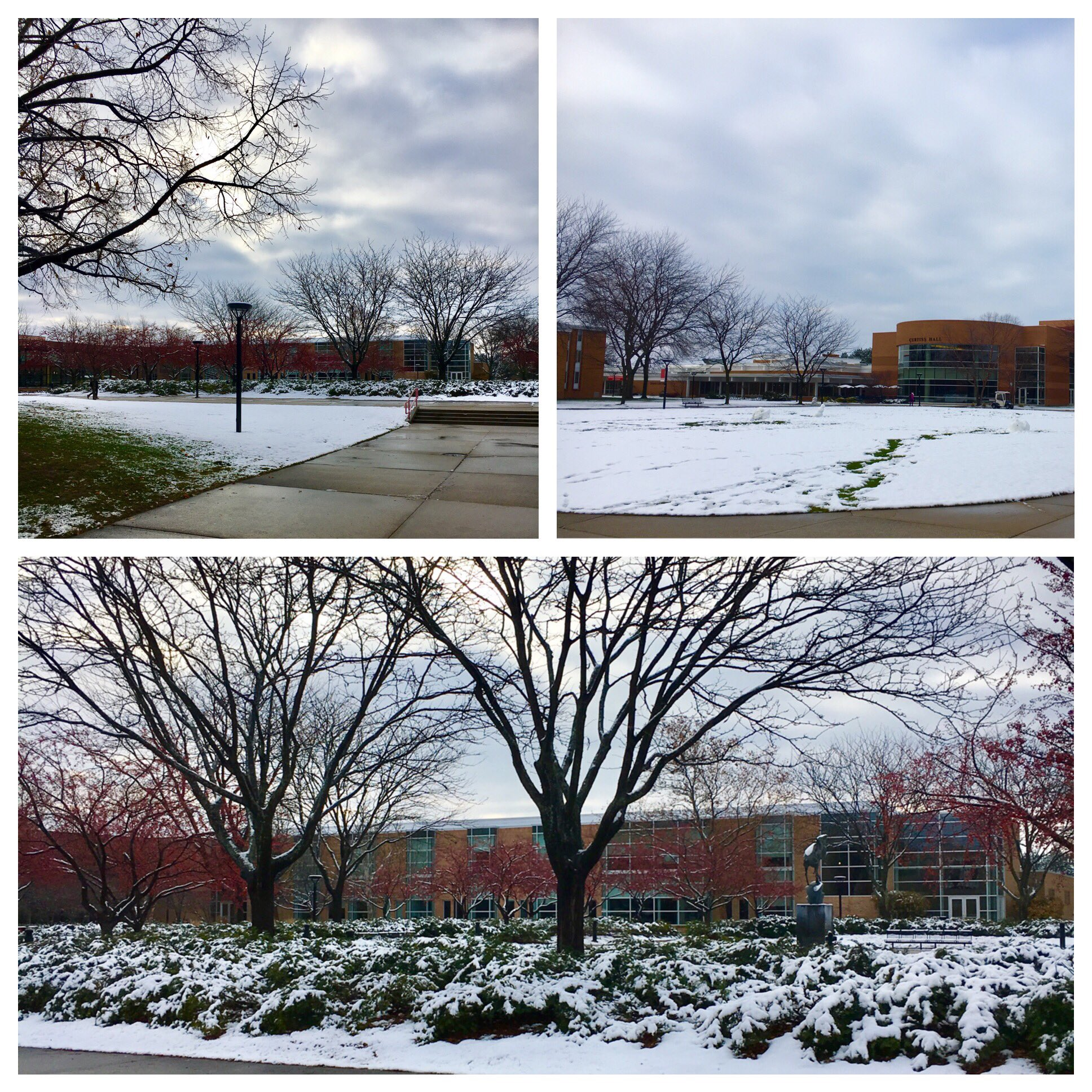 Campus was covered in a beautiful blanket of snow this morning! Looks like winter has finally arrived! #WeCardinal https://t.co/eM9alejgwi