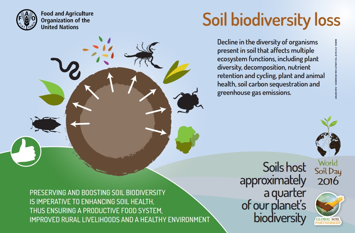 Roger thurow rogerthurow twitter for Soil uses and its importance