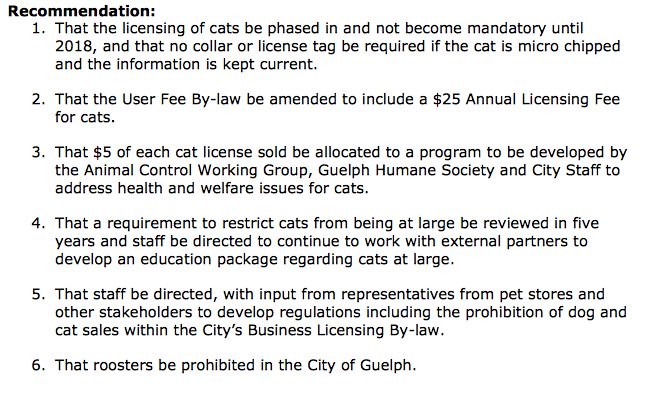 Animal Control Bylaw Service Review recommendations 1-6. https://t.co/bMff5d9mUL