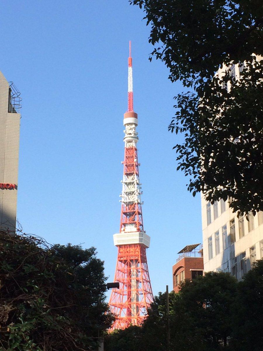 今朝の東京タワー。「PPAP」を強要することをピコハラというそうです。今年、各地の忘年会で猛威をふるっているとか。くれぐれも急なピコハラにはご注意くださいませ。 #東京タワーのふもとから https://t.co/Av5ElJwFHt
