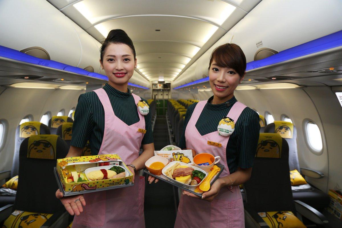 本日24日、エバー航空の新しい塗装機、「ぐでたまジェット」が桃園\u2015成田路線に就航しました!今回の就航を記念し、「ぐでたまジェット」限定で10%割引キャンペーンを