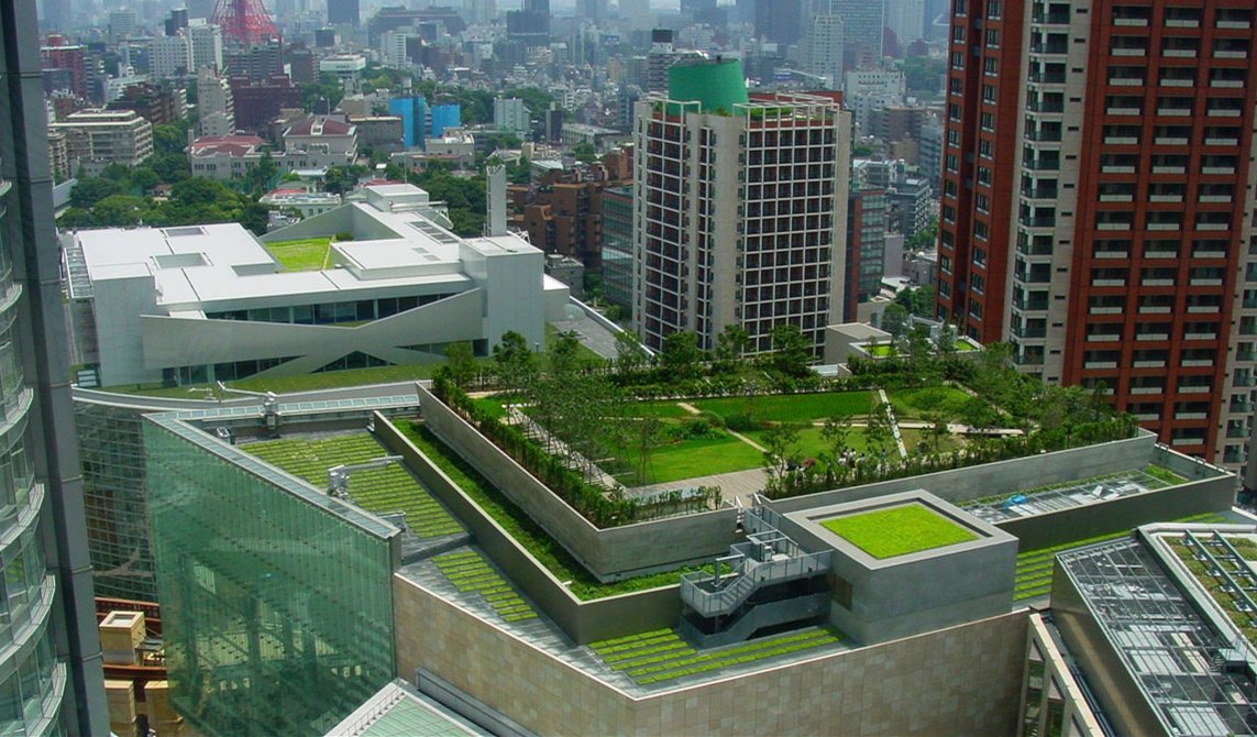 how to build rooftop gardens