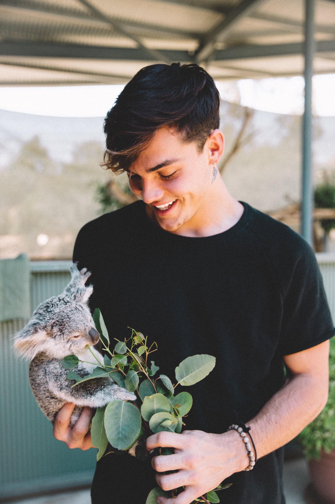 """Grayson Dolan On Twitter: """"SHE'S A BABY AND HER NAME IS"""