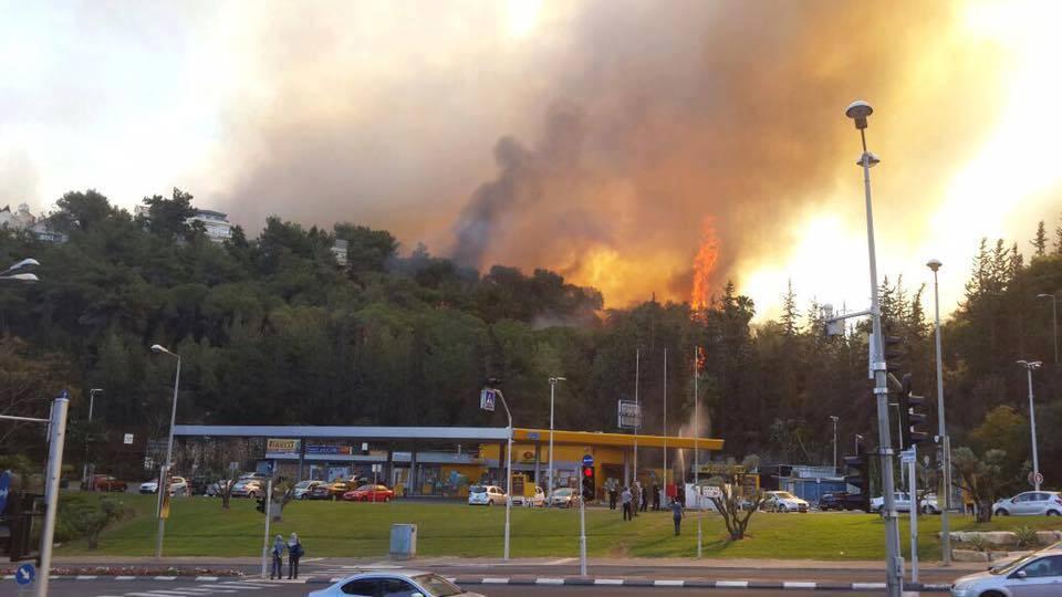 """حرائق كبيرة في """"إسرائيل"""" وطواقم الإطفاء عاجزة عن إخمادها CyBVZe5W8AAZZBA"""