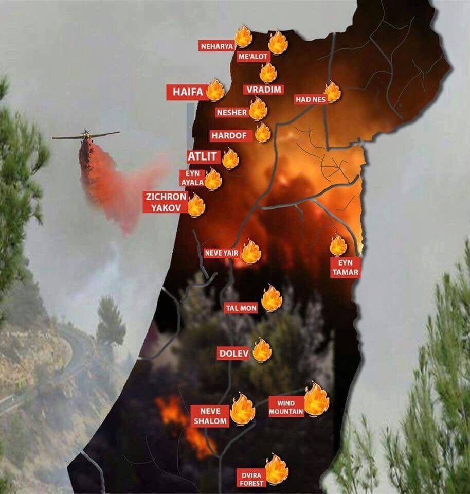 Image result for arson fires in Israel