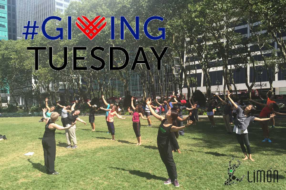 After you score on #BlackFriday deals, make sure to give back to the #arts and support #Limondance educational programs on #GivingTuesday!