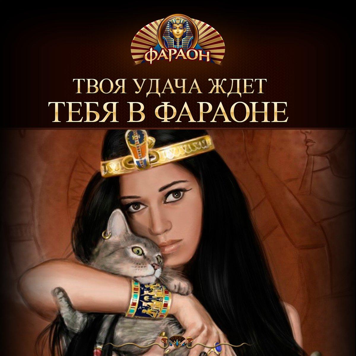 Игровой клуб компас новосибирск