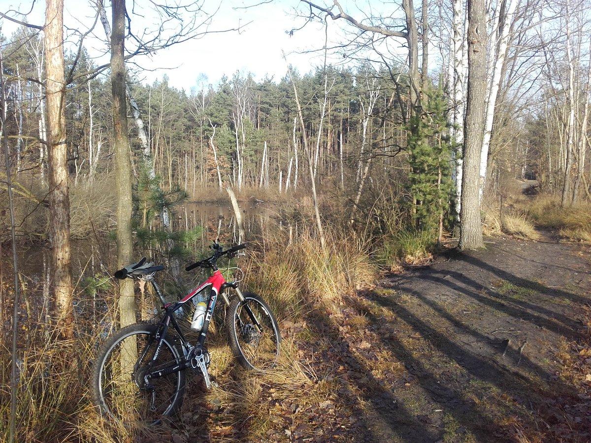 test Twitter Media - #mtb Mazoviecki Park Krajobrazowy #cold https://t.co/53S80p5REh