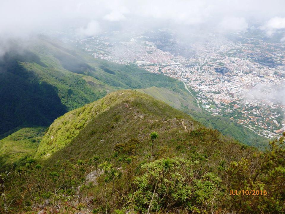#LaVidaEstáEnLosBosques. #Caracas y #ParqueNacional #ElÁvila en foto de @helixoco https://t.co/AZfEDlQXLa