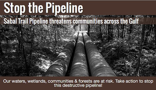 Stop. The. Pipeline. DAPL's Sister: #SabalTrailPipeline  #WaterIsLife #NoDAPL  https://t.co/PFvoCgHOxe https://t.co/eCq5fIyVuG