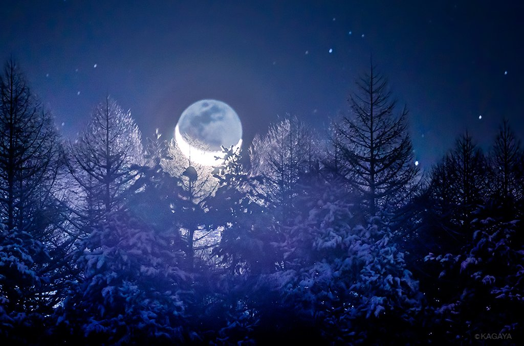 地球照を抱いた月が昇ると、月光に照らされた山の木々が、氷のお城のように輝いていました。(先日長野県茅野市にて撮影) pic.twitter.com/PGtUffnYg0