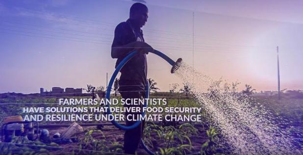 #Climate adaptation in #African agriculture: find out how to move from science to action. https://t.co/6AWIbRvqnp #WeAAAre #COP22 #drylands https://t.co/qDdj2dFn5O