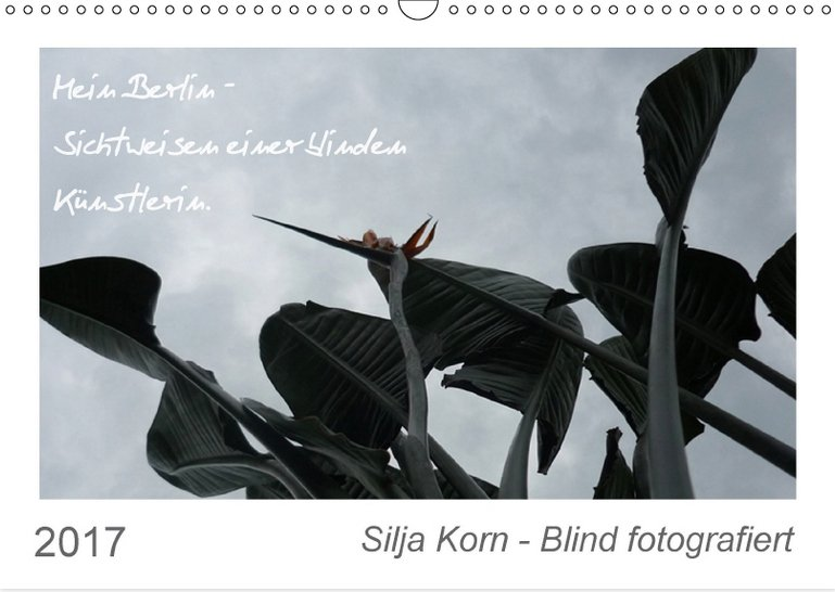 silja_korn