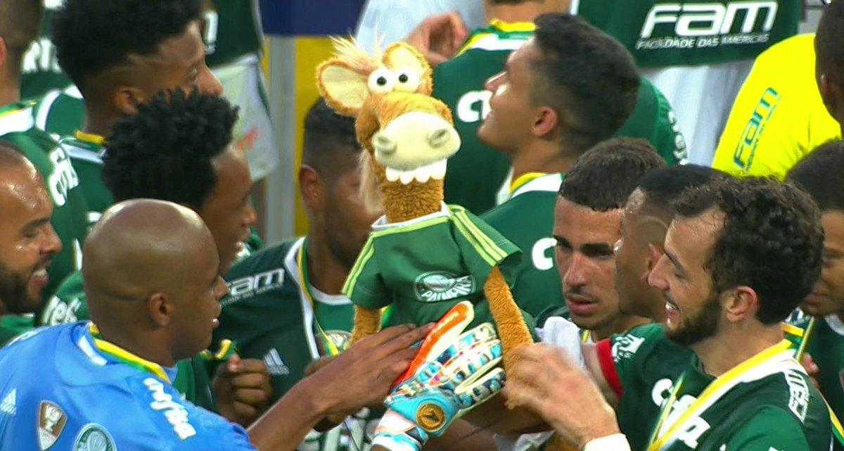 Palmeiras é campeão do Brasileirão! E olha quem tá comemorando junto com os jogadores! 😂 #cavlinhosdofantastico