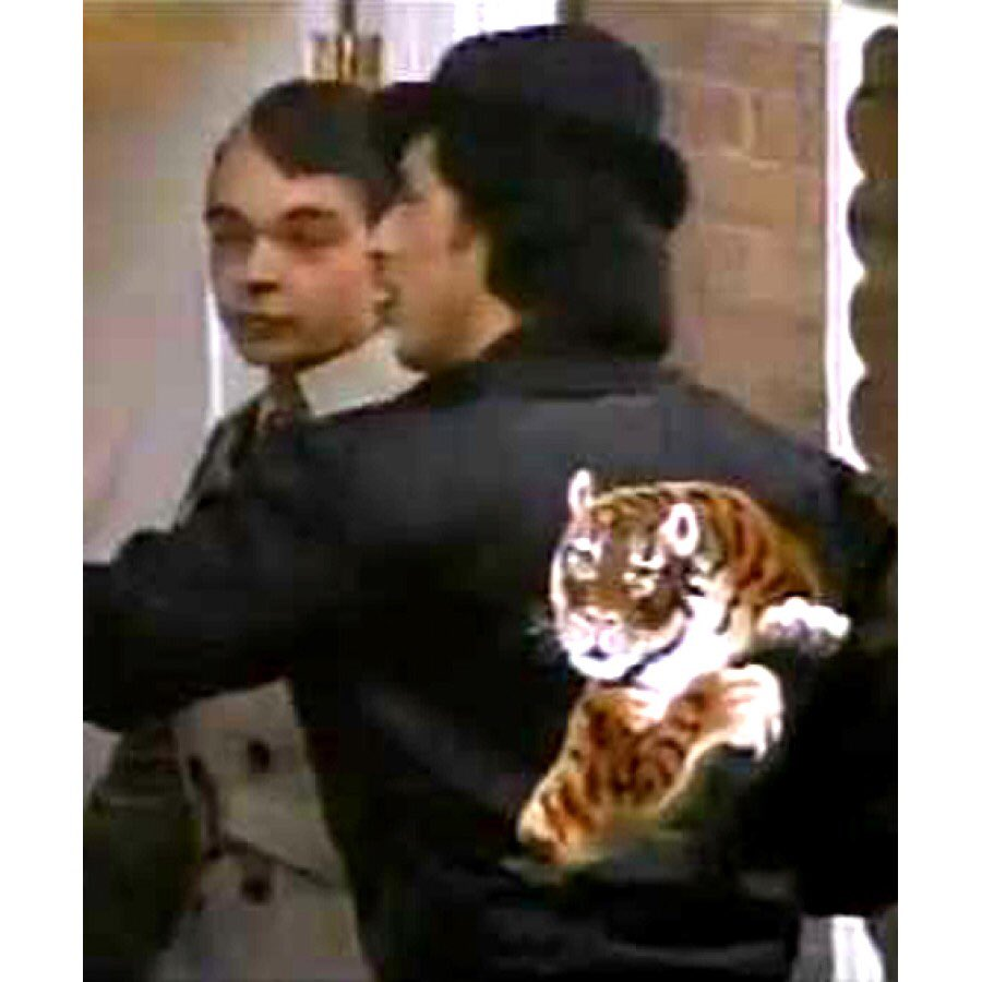 Keeley Donovan On Twitter This Just My New Tiger Jacket Jacket