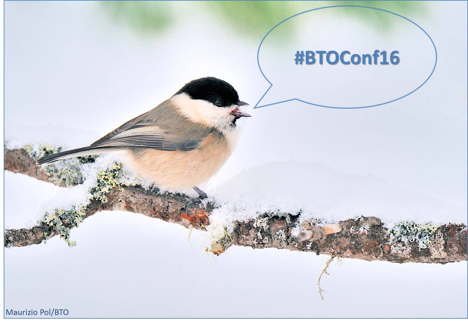We can't wait for our annual conference in Derbyshire this weekend. Follow #BTOConf16 for all the news: https://t.co/rVYecJJeEJ https://t.co/R5JB1EA3nl