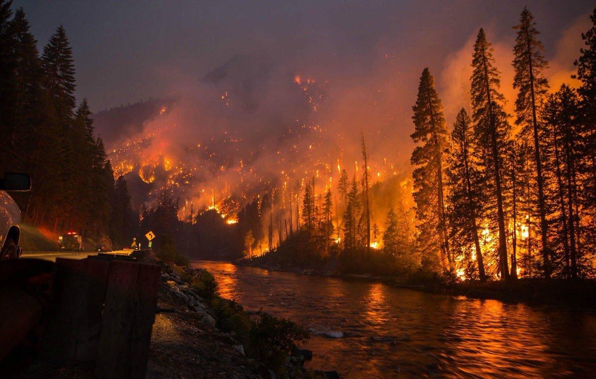 VIDEO YouTube: attraversa in auto l'incendio nel bosco