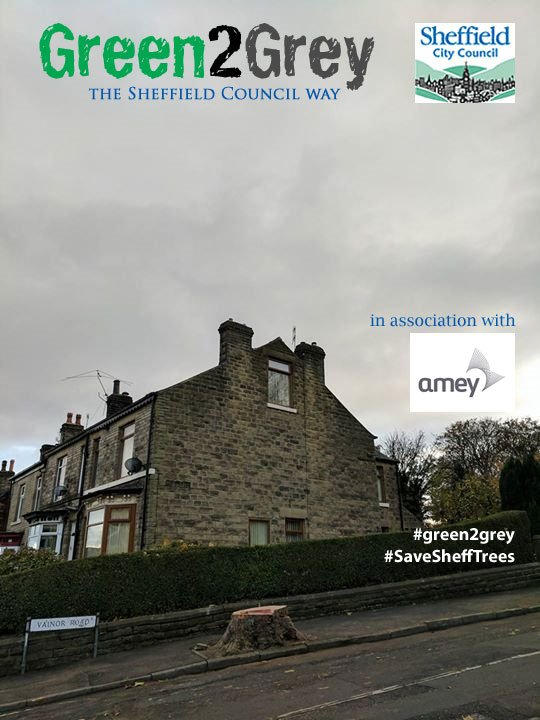 What's missing? #SaveSheffTrees #NationalTreeWeek #green2grey @SaveSheffTrees https://t.co/Ztlkbgrp3m