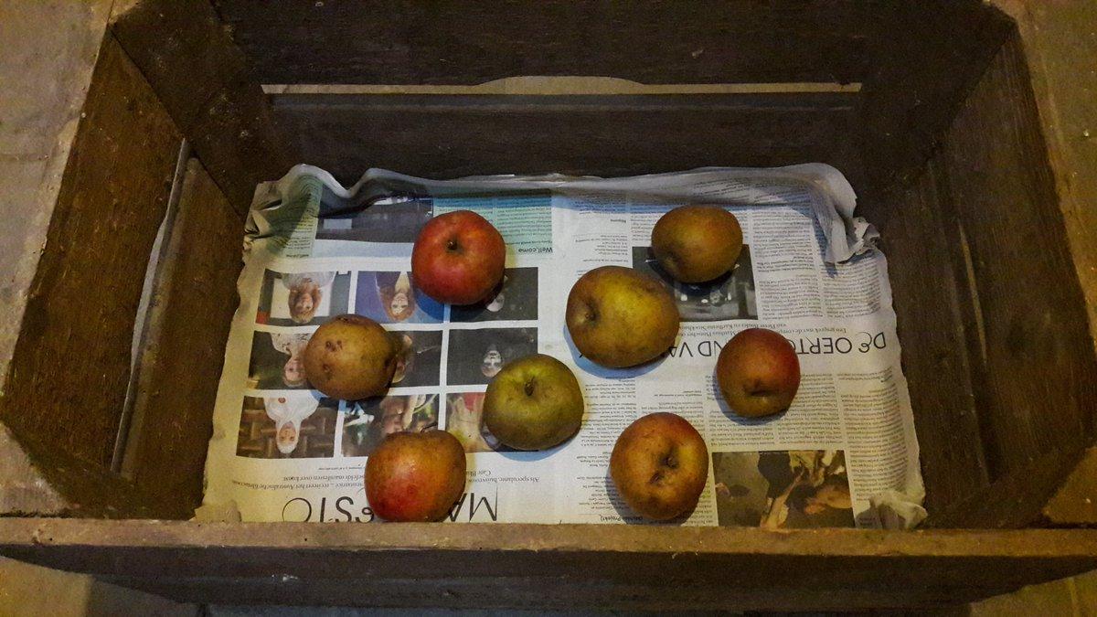 Appels bewaren in de kelder.