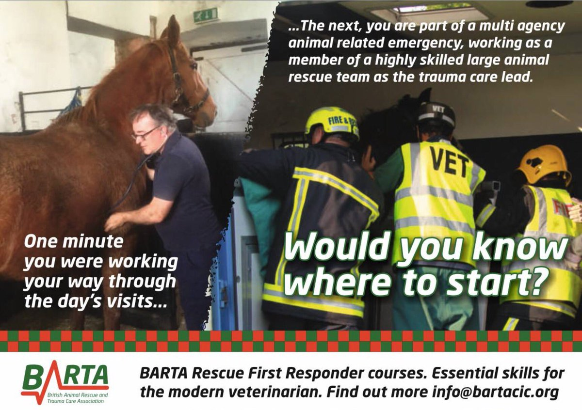 bartarescue photo