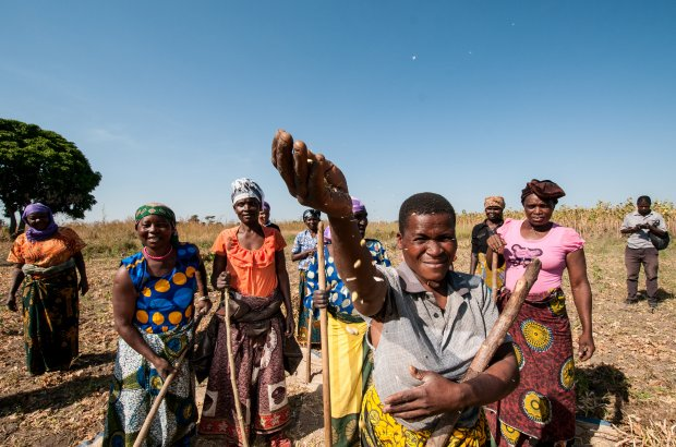 Experts launch Action Plan to help #African agriculture adapt to #climatechange #drylands #COP22 #weAAAre https://t.co/3iV94t4G9N https://t.co/WkoSABSKMc