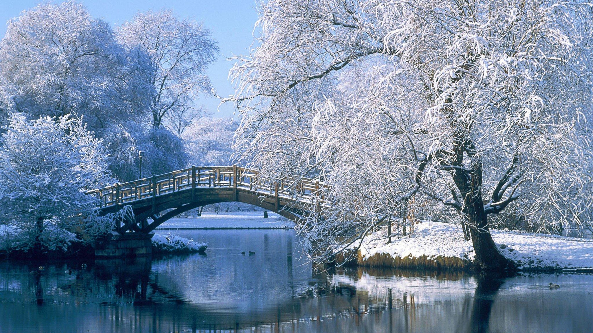 Природа зимой картинки красивые