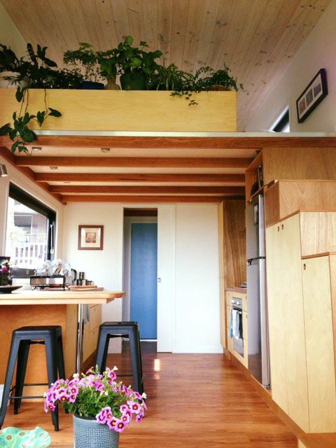 types of house designs, not so big house designs, tiny concrete house designs, on zen modern tiny house designs