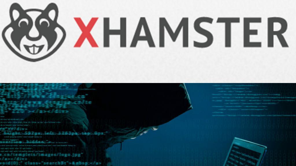 Xhamster website