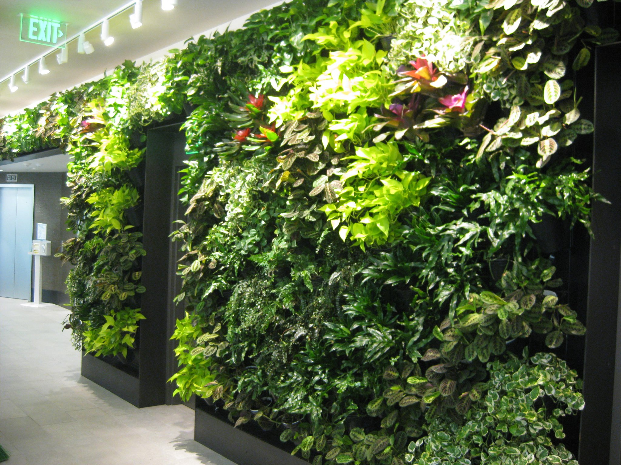 Thumbnail for 11.30.16 #landscapechat Green Walls