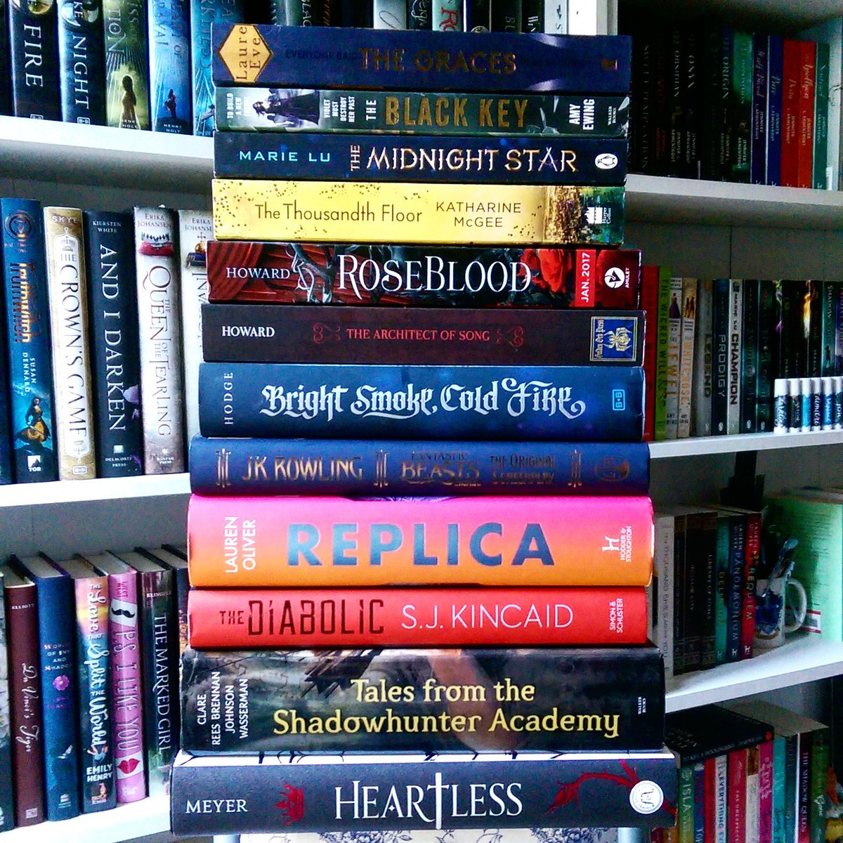 November Book Haul Quoththebooklover