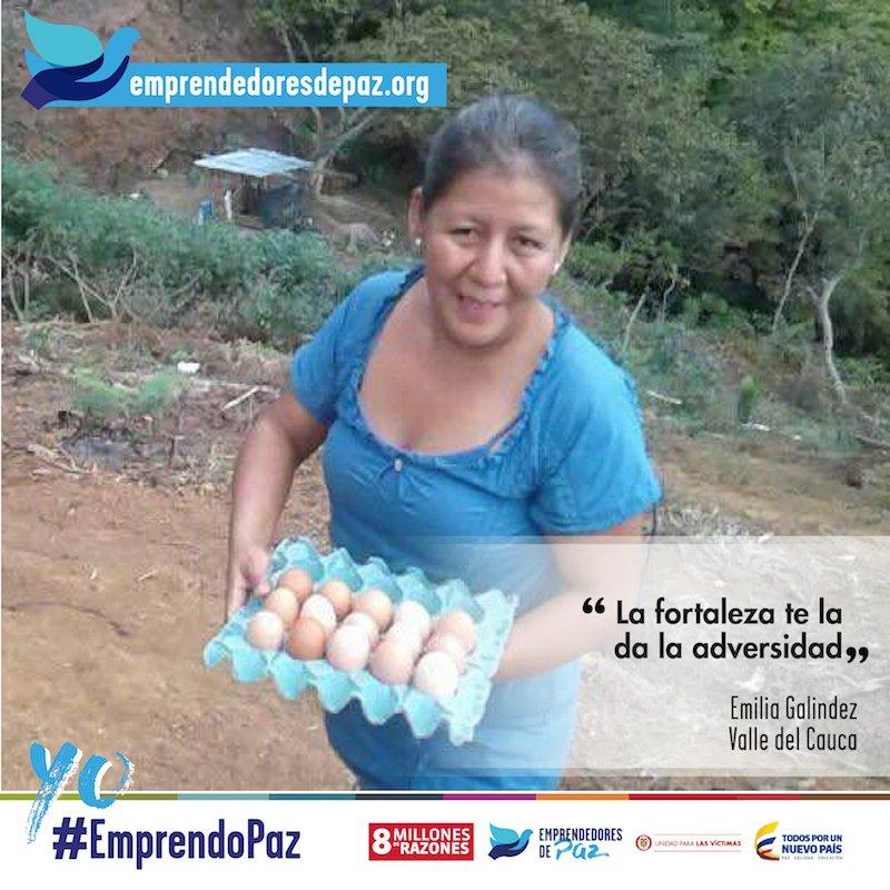 Emilia quiere vender huevos de primera calidad. ¿Quieres ayudarla? Ingresa en https://t.co/AM2kLdhfdW #EmprendoPaz #8MillonesDeRazones https://t.co/GFttz7KvLq