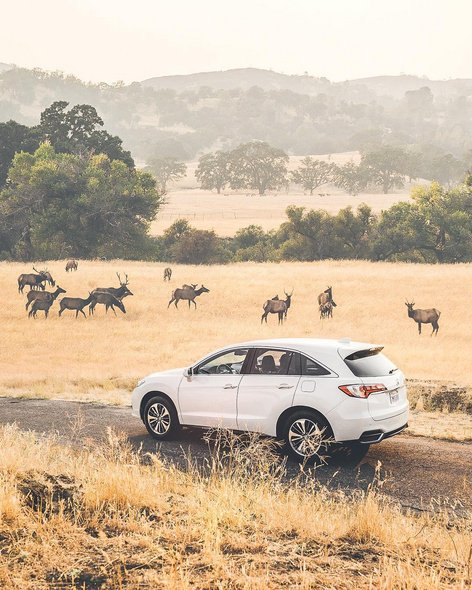 "Paragon Acura On Twitter: ""#Acura #RDX With A View.…"