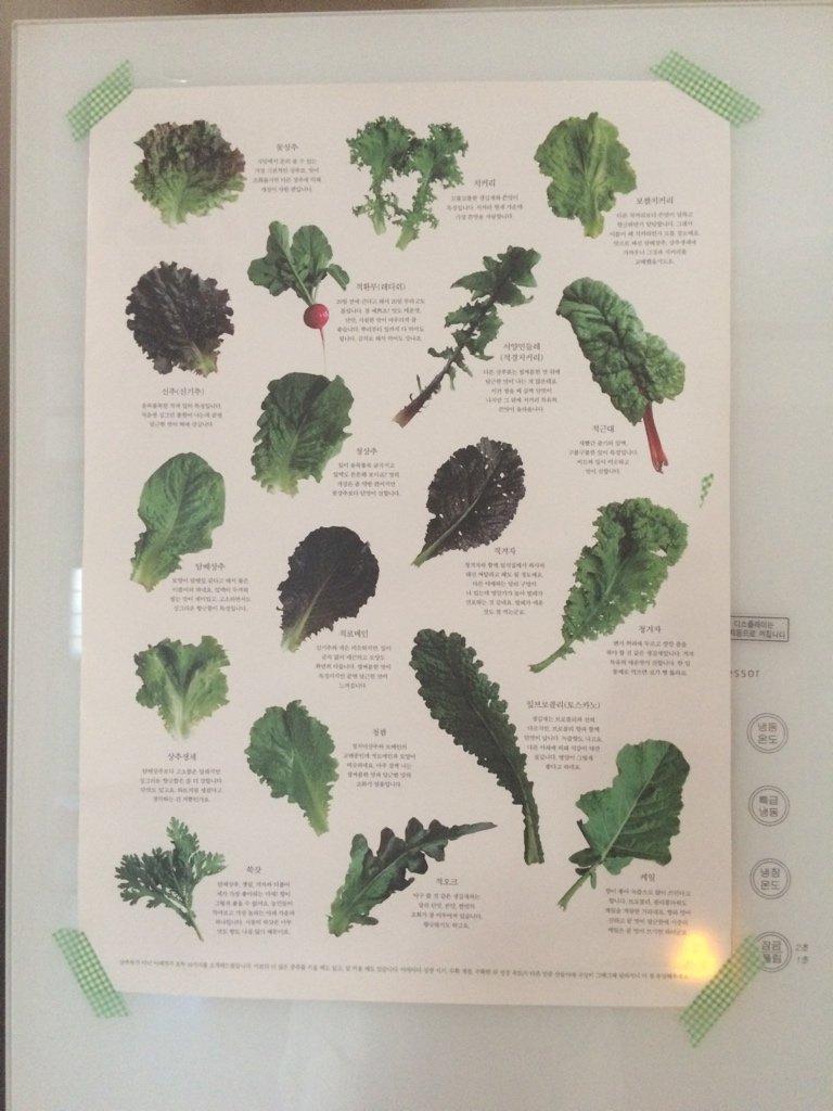 산들야채라는 곳에서  쌈채소를 시켰더니 이런게 와서 냉장고에 붙였다  쌈채소 이름 소개 https://t.co/edxlthLnvv