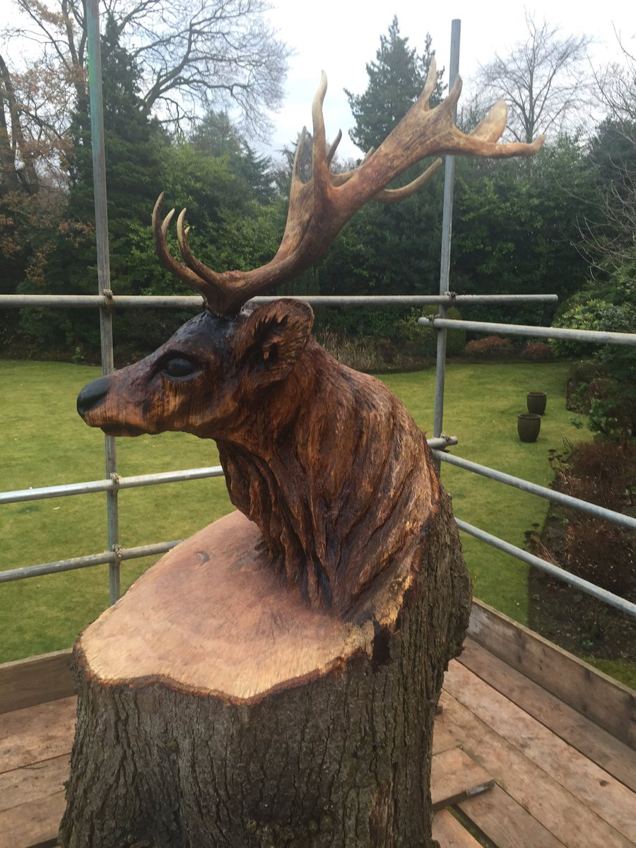 Andy burgess on twitter quot stag finished tree trunk